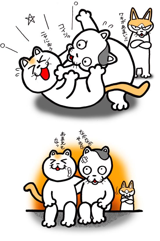 公園猫02