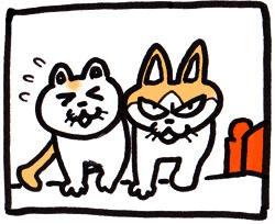 猫/アネゴ弟漫画1
