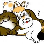 一緒に寝ると幸せだね。