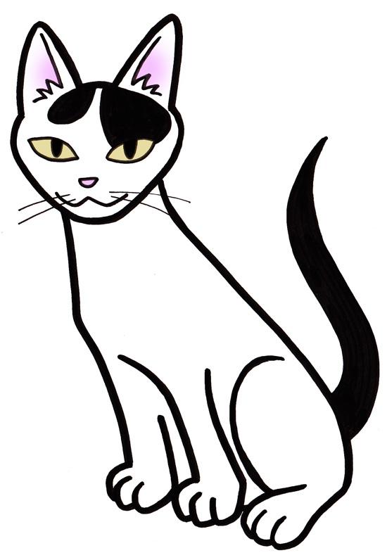 猫/シロクロ01