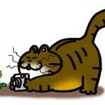 「ネコ目線!」